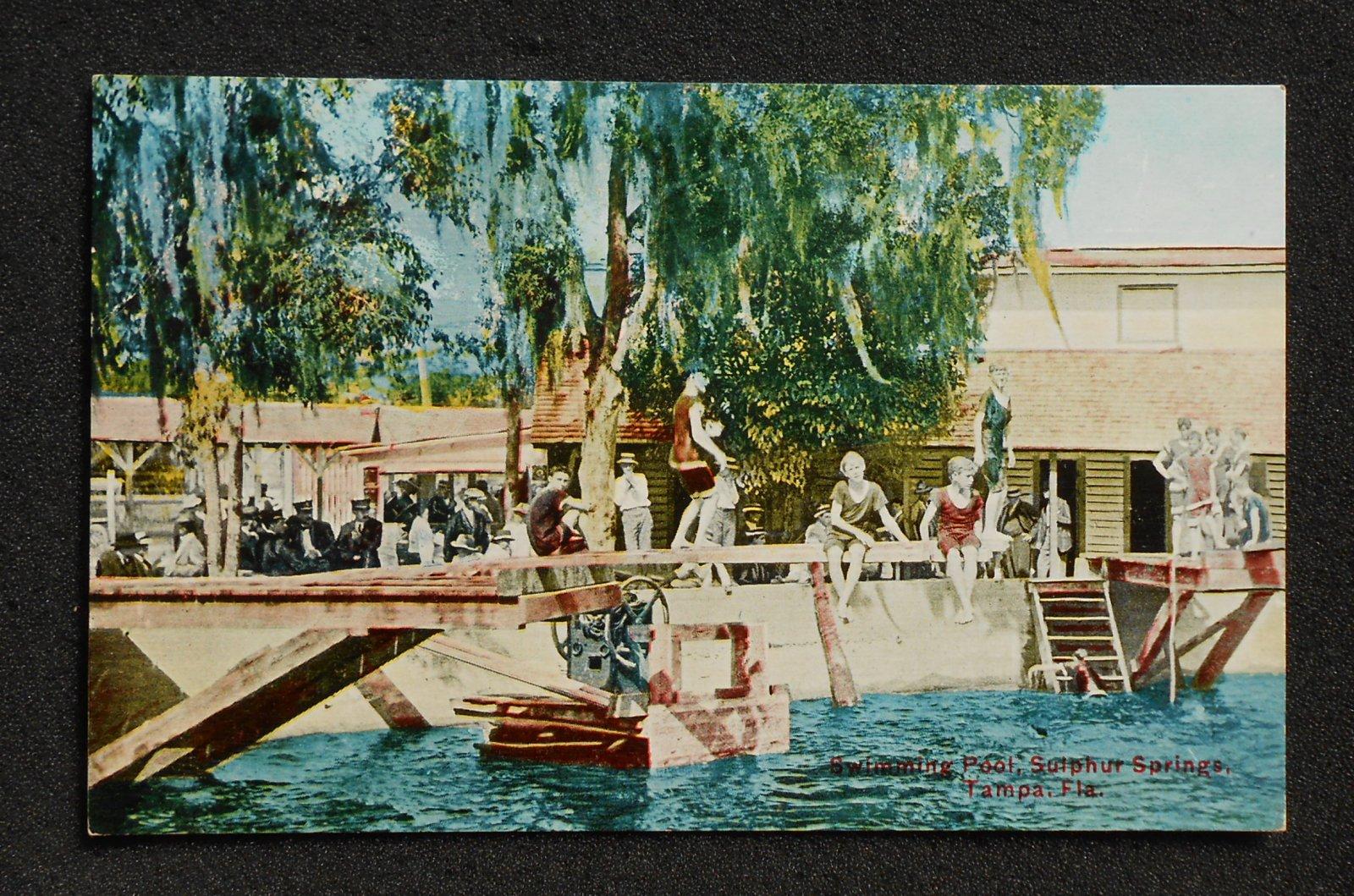 1900s swimming pool sulphur springs tampa fl hillsborough co postcard florida ebay for Hillsborough swimming pool prices