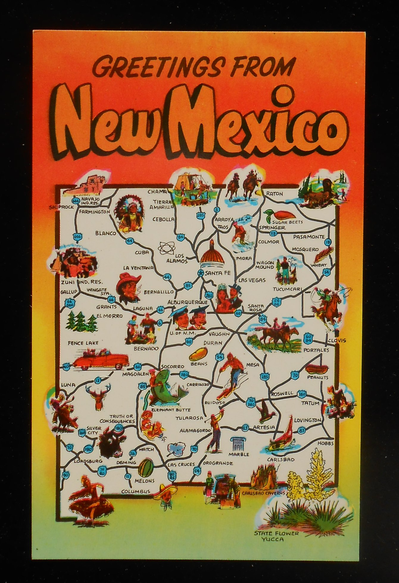 1950s State Map Landmarks Icons Yucca Flower NM Postcard New Mexico